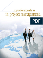 Building professionalism in project management