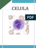 La Celulas