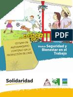 CIS Social Aspects TA Spanish