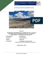 Informe Evaluación Ambiental.docx
