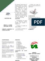 Plegable Auditoria de Control Interno plegable-1.docx