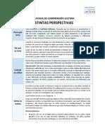 ACE_Estrategia_Distintas_perspectivas.pdf