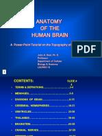 Anatomy of Brain Tutorial - John a. Beal