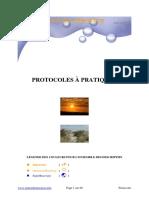 PROTOCOLOS MORSES