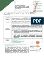 semiologia neurologica.doc
