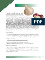 ajo.pdf