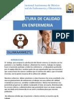 CULTURA DE CALIDAD EN ENFERMEIA.pdf