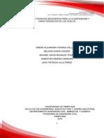 Apique (INFORME FINAL) fin.docx