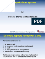 GL5033_2_Petroleum system(1).pdf