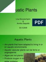 Aquatic plants.ppt
