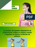 Aparato Respiratorio 52270 14860