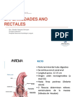Enfermedades Ano Rectales Converted