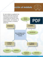 1.1 Diagramas de Bases Biológicas