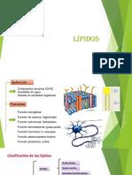Lípidos 1.pptx