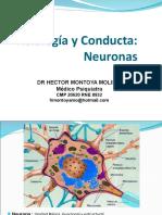 2da Clase NEURONA Ultimo.ppt Ultimo Plus 2018
