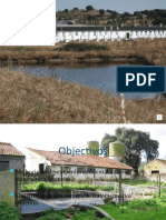 TCII - Ciências do Ambiente