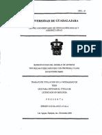 Blanco_Ayala_Sergio_Luis.pdf