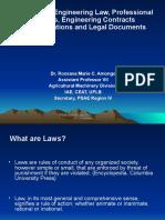 AE Laws 2011pptx