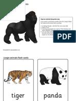 jungle animals.pdf