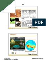 294106_MATERIALDEESTUDIOPARTEXXDiap597-614.pdf