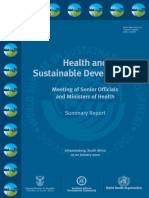 Health and Sustainable Development Summary Report