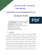 Eliminacion_Fe2.pdf