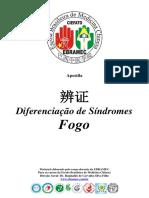 Diferenciação de Síndromes - Fogo.pdf