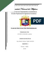 Plan de Prácticas- Luzmila