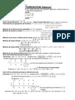 146236019-FACTORIZACION.pdf