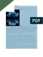 Resiliencia Y Quiron.pdf