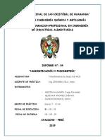 HUMIDIFICACION Y PICNOMETRIA N°03