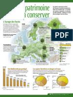 Infographie Carrefour - La Forêt, Patrimoine à Conserver - Juin 2003