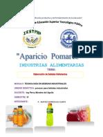 294373381-Bebida-Hidratante-Informe.docx