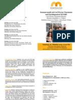 Programm Punzmann