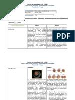 Ejercicio 2.1 Celula
