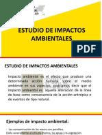 estudio de impacto ambinetal.pdf