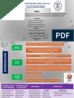 Modelo de PPT -Ejemplo