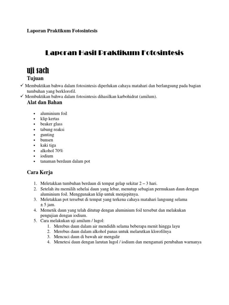 Laporan Praktikum Fotosintesis Docx