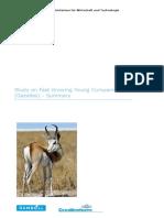 RnD 고성장 일자리 창출 가젤형 기업연구 (1).pdf