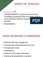 ESTABLECIMIENTO DE  PRADERAS.pptx