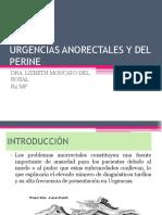 urgencias-anorectales-y-del-perine.pptx