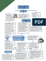 402094770 247425683 Mapa Conceptual Origen y Evolucion de La Psicologia Docx