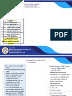 LEAFLET CKD.doc