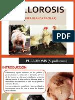 PULLOROSIS AVIAR.pdf