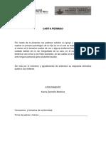 CARTA PERMISO.docx