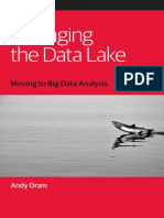 Gerente el lago de datos