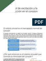 Control de excitación y la conducción en el.pptx