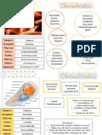 bio assign.pdf