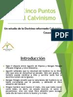 Puntos del Calvinismo