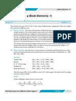 P block II.pdf